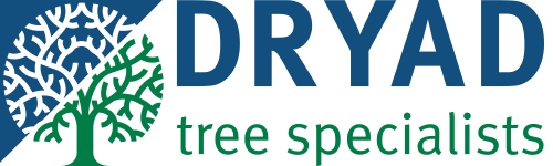 Dryad Trees