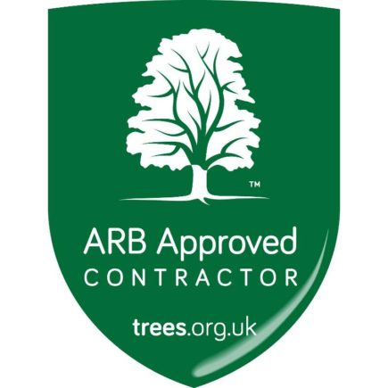 Arboricultural Association approved contractor